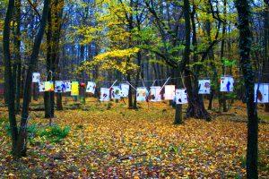 Stellenangebot Erzieher / Sozialpädagoge mit Leitungsfunktion (m/w/d) im Waldkindergarten Buxtehude zum 01.12.19