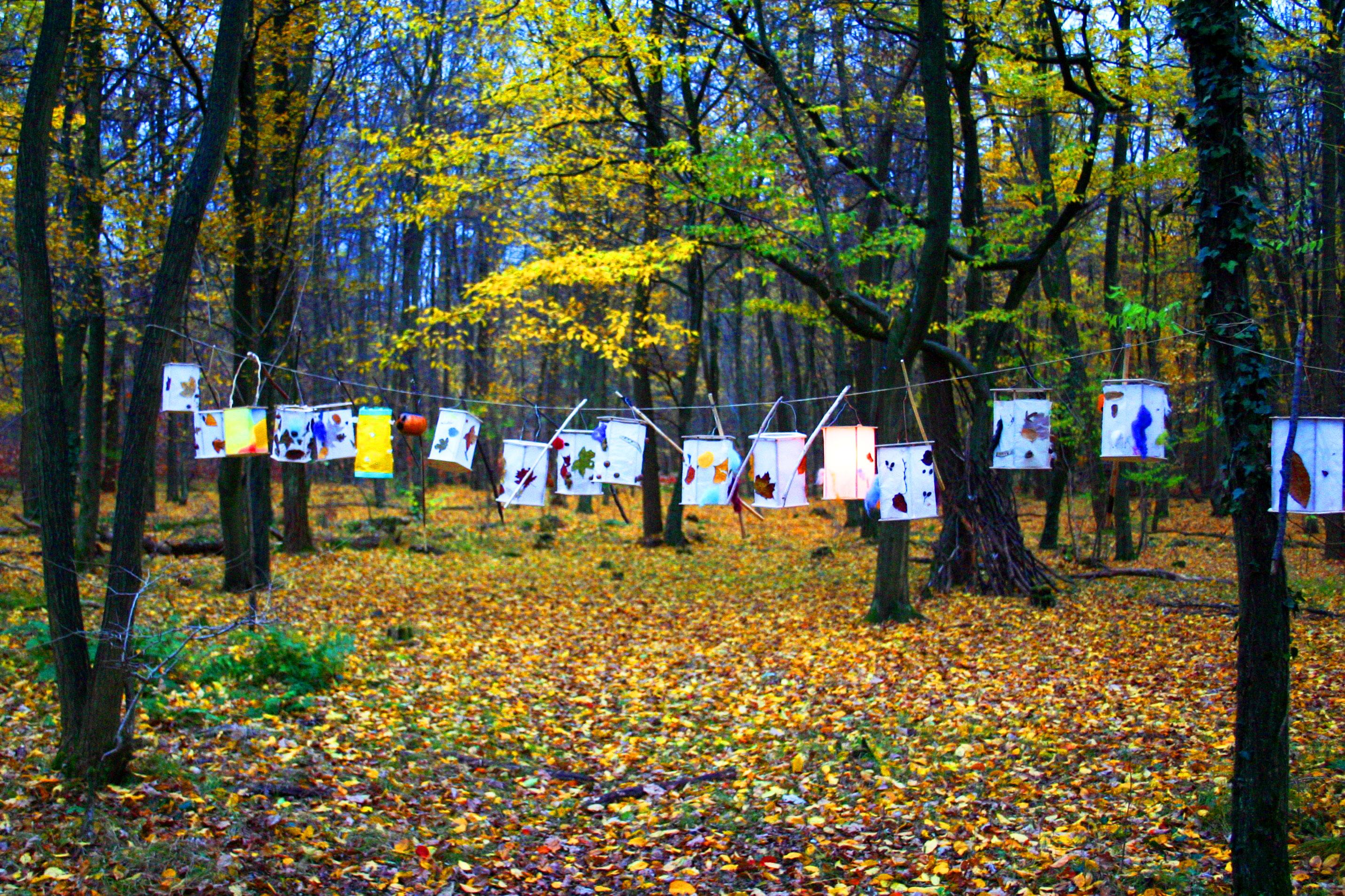 Zum 01.12.2019 suchen wir eine/n Erzieher / Sozialpädagoge mit Leitungsaufgaben (m/w/d) im Waldkindergarten Buxtehude